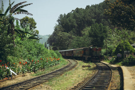 Tea Plantation Locomotive